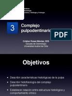 HISTOLOGIA ORAL PULPA.pdf