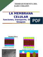 Clase 5 La Membrana Celularpara Presentar