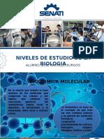 2 -  Niveles y estudio de la biología.pptx