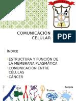 Comunicacion Celular Aula Virtual