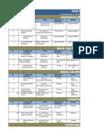 Base de Datos Consultores Vigentes H Excel