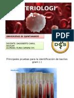 Klepsiela p.bioquimicas