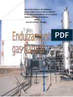 Endulzamiento Del Gas