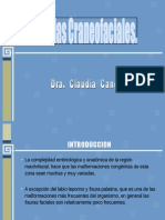 anomalias-craneofaciales-1206600609403084-4.ppt