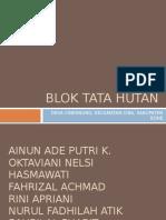 5427_blok Tata Hutan