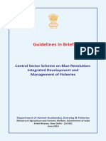 Brief Guidelines_CSS on Blue Revolution_June 2016
