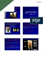 Anatomia e Acesso Cirurgico [Modo de Compatibilidade] (1)