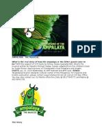 Ampalaya Communications