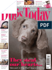 Dogs Today UK March 2017