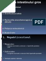 Curs 2 Patologie Inflamatorie Si Benigna Colon