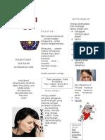 2. Leaflet Vertigo