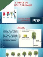 ARBOL E INDICE DE DESARROLLO HUMANO.pptx