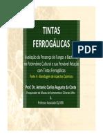 Tintasferrogalicas-Antoniocarloscosta17 Curso 2014