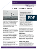the effects of wind turbines on wildlife