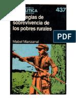 Manzanal Libro Estrategias
