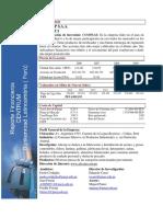 Alicorp Cambio a Un Modelo Matricial- Alicorpsaamarzo2011