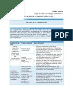CTA - Planificación Unidad 4 - 4to Grado v2.doc