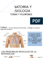 Anatomia y Fisiologia Torax