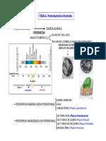 TEMA 6. Proteobacterias Fototrofas