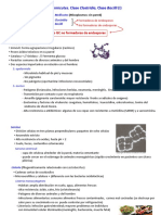 TEMA 9. Phylum Firmicutes. Clase Clostridia, Clase Bacilli (I)