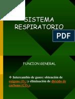 Clase 17 Sistema Respiratorio.pdf