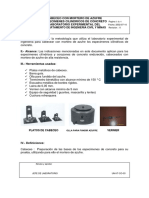 CABECEO CON MORTERO DE AZUFRE DE ESPECIMENES CI.pdf