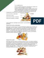 Grupos Basicos de La Alimentacion
