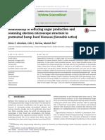 Cannabis Biomass