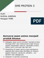 Metabolisme Protein 3