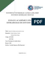 Causas de La Delincuencia Juvenil en Lima