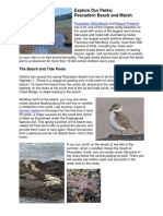 2013 Explore Our Parks - Pescadero Beach and Marsh