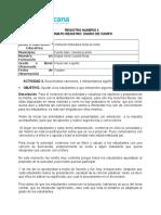 Registro Diario de Campo- Practica Profesional