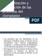 Cloroplasto Biología