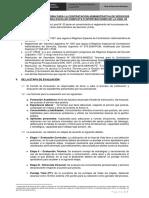 BASES-PROCESOS-CAS-020117.pdf