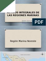 Activos Integrales de Las Regiones Marinas-