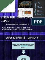 Biokimia Lipid