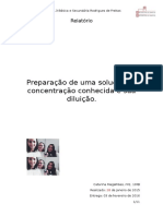 Relatório Soluções 2.1. (Catarina)