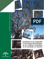 1 1820 Seguridad en Aplicacion Productos Fitosanitarios en Cultivos Protegidos Provincia Almeria