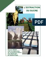 LextractiondusucreCEDUS.pdf