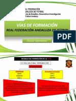 Vias de Formacion de La Rfaf_actualizado16-17