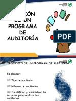 Charla Gestión de Un Programa de Auditoría - RUC