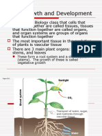 plant structures and physiology notes
