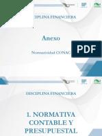 Contabilidad Gubernamental Anexo (P).pdf