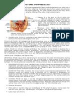 ANATOMY AND PHYSIOLOG myoma.docx