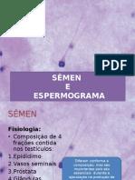 Aula Espermograma