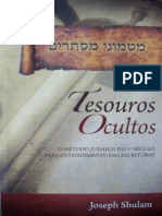 Tesouros Ocultos.pdf