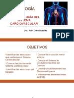 13a Clase Semiología Sistema Cardiovascular 1a parte
