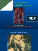 Filariasis Quiluria