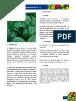 ficha albahaca.pdf