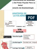 Seminario via Aerea anestesiologia